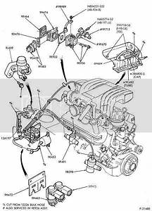 04 Gt Belt Diagram