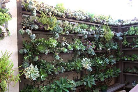 Vertical Succulent Garden by 50 Best Succulent Garden Ideas For 2017