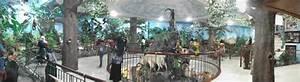 Pianomania  Medan U0026 39 S Rahmat International Wildlife Gallery