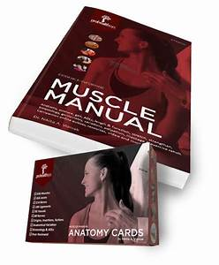 Muscle Manual Text And Flash Cards