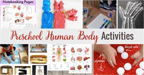 preschool human activities 818 | Preschool Human Body Activities FB