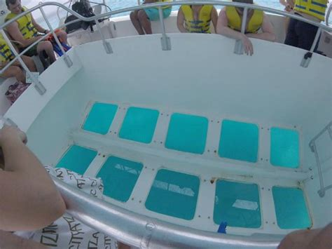 Glass Bottom Boat And Snorkeling by Glass Bottom Boat Snorkeling Trip Picture Of Sandals