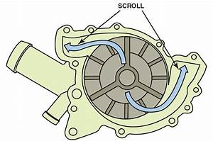 Water Pumps In Automotive Engine Coolant Systems