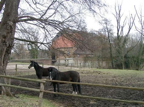 Fotos Haus Geist  59302 Oelde