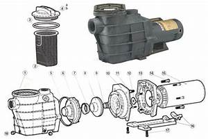 Hayward Super Ii Pump Diagram