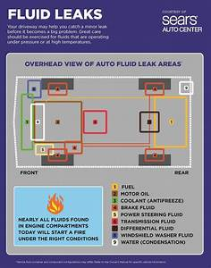 Fluid Leakage Safety     Chart Identifying Areas On Your