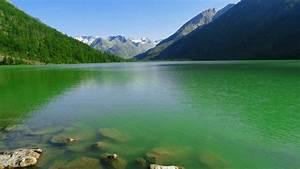 Green, Water, Lake, Wallpaper, Background