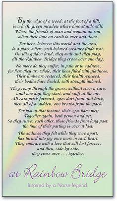 dachshund memorial poems  quotes quotesgram