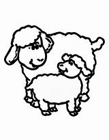 Sheep Lamb Coloring Outline Lion Pages Drawing Clipart Printable Clip Library Clipartmag Getdrawings Cliparts Sheets Realistic Getcolorings Popular Coloring2print sketch template