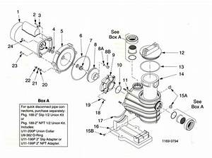 Sta Rite Pump Parts Diagram
