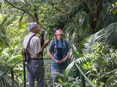 scientists work   save  amazon rainforest