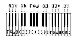 How To Play the Piano   Piano for Beginners