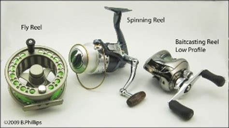 types  fishing reels  bass fishing