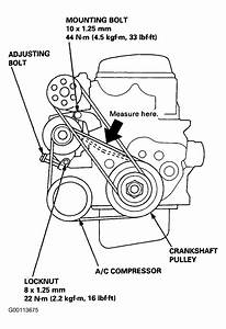 2000 Honda Civic Serpentine Belt Routing And Timing Belt Diagrams