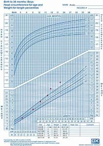 20 Unique Fenton Growth Chart