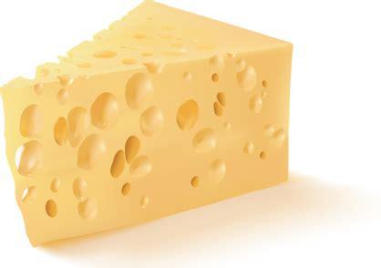 cheese vector  vector
