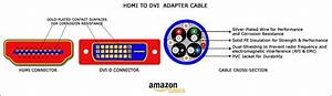 Amazon Com  Amazonbasics Hdmi To Dvi Adapter Cable