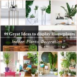 99 great ideas to display houseplants indoor plants decoration balcony garden web