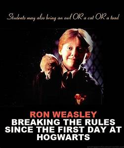 Ronald Weasley Quotes. QuotesGram
