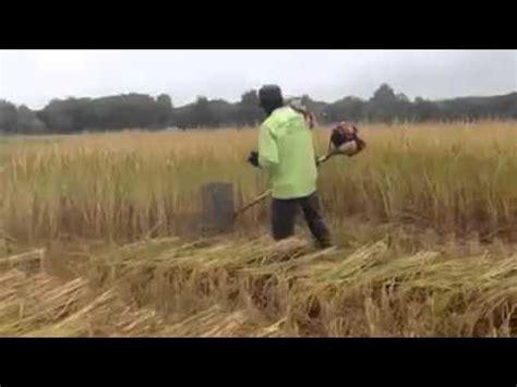 mesin potong rumput manual modifikasi mesin sedrhana perontok padi videolike