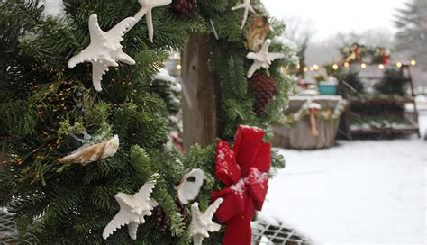 Christmas On Cape Cod 5 Events You Shouldn't Miss