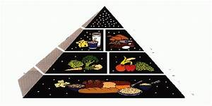 What Is The Best Food Pyramid Chart For Kids Whyienjoy