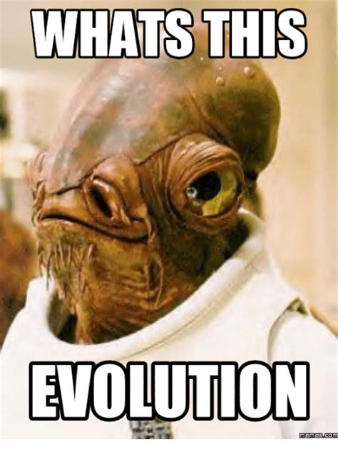 Evolution Memes - meme evolution 28 images pokemon eevee evolution meme by criticalshade on deviantart