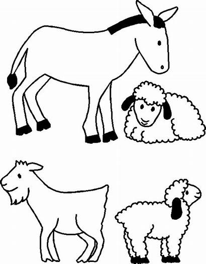 Nativity Animals Paper Clipart Christmas Animal Friends