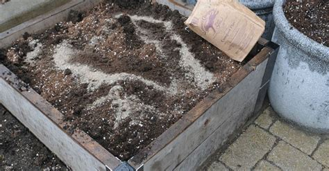raised bed soil calculator 1553 best images about gardening on raised