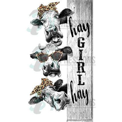 hay girl hay cows  xpressions