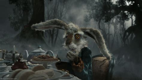 mad march hare march hare photo  fanpop