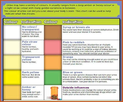 urien colors what your urine colour says about your health according