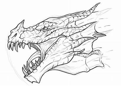 Skyrim Dragon Dragons Sketches Realistic Drawings Cool