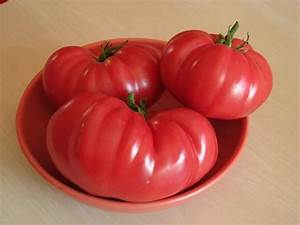Zimmerpflanzen Alte Sorten : marmande historische fleischtomate alte sorte robuste tomate ~ Michelbontemps.com Haus und Dekorationen