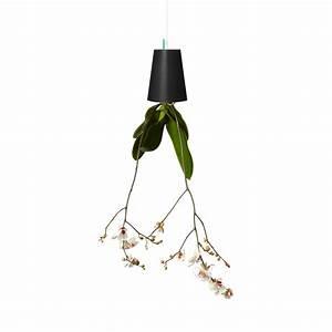 Boskke Sky Planter : boskke sky planter recycled medium white boskke touch of modern ~ Orissabook.com Haus und Dekorationen