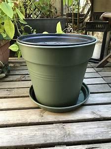 Compost En Appartement : faire un compost en appartement annikapanika ~ Melissatoandfro.com Idées de Décoration