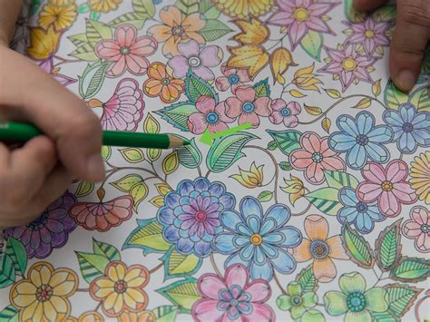 color   coloring book  steps  pictures