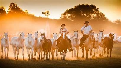 Gaucho Bing San Antonio Festival Areco Argentina