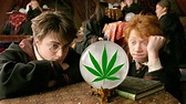 'Harry Potter' Just Got Arrested For Smoking Weed & We're ...