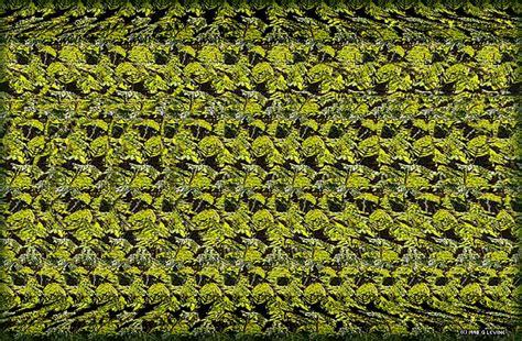 basik.ru - Объемные картинки - SIRDS картинки - фотография 2