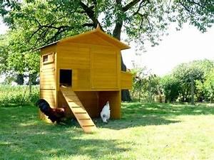 Chemin Des Poulaillers : grand poulailler pour 10 12 poules ~ Melissatoandfro.com Idées de Décoration