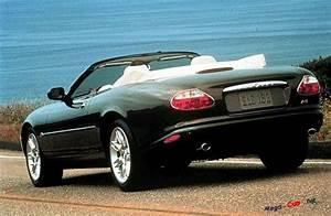 Jaguar Xk8 Cabriolet : jaguar xk8 cabriolet photos news reviews specs car listings ~ Medecine-chirurgie-esthetiques.com Avis de Voitures