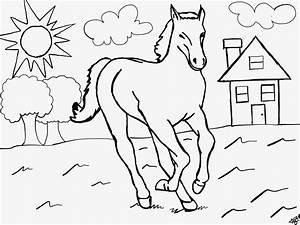 Mein Erstes Ausmalbild Mit Pferd Kostenlos
