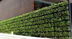 Balcony Privacy Screen With Vertical Garden Effective