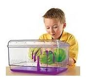 Educational Toys Kits & Gifts  Science And Nature