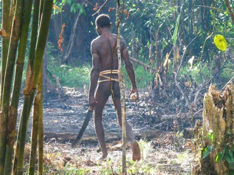 chambre agriculture is e peuples du monde cultures des peuples de la forêt