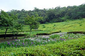 周南 緑地 公園