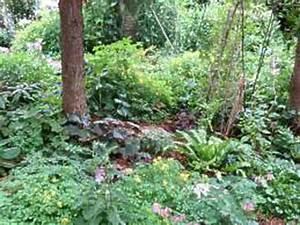 Gartengestaltung Unter Bäumen : bepflanzung unter b umen alte b ume unterpflanzen ~ Yasmunasinghe.com Haus und Dekorationen