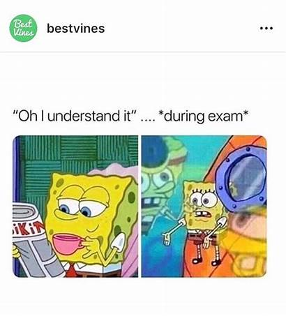 Spongebob Memes Funny Stupid Teacher Education Humor