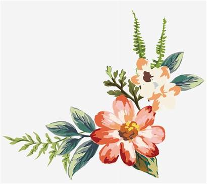 Watercolor Flowers Flower Painting Transparent Seekpng